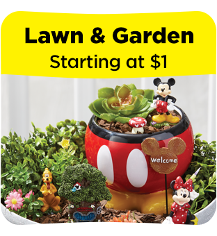 Shop Lawn and Garden Decor at Dollar General.